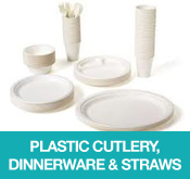 Plastic Cutlery Dinnerware and Straws